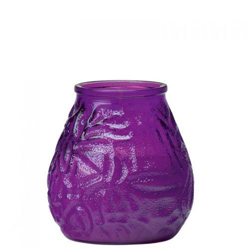 Terraskaars purple